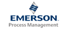 Emerson Processing